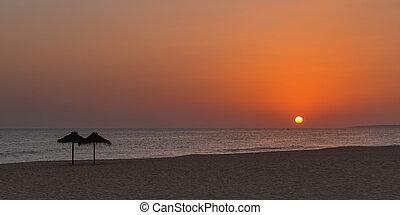 złoty, plaża., zachód słońca, portugal.