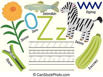 z., ללמוד, אלפבית, practice., לכתוב, וקטור, מכתב, אנגלית, children., חינוך, illustration.