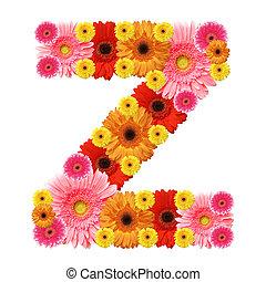 z, alfabeto, whit, flor, isolado