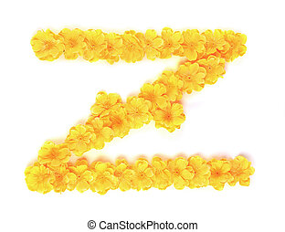 z, alphabet., bloem, brief