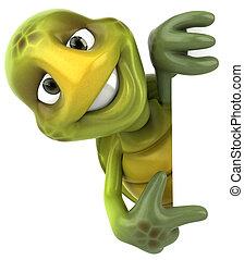zabawa, żółw