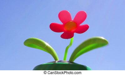 zabawka, kwiat