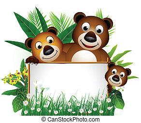 zabawny, niedźwiedź, rodzina, brązowy