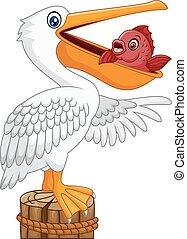 zabawny, zatoka, rysunek, pelikan