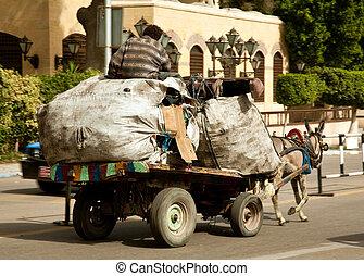 zabbaleen, cavalo, lixo, carreta, coletores
