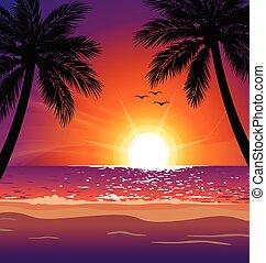 zachód słońca, dłoń drzewa, wektor, ciepły, tropikalna plaża