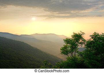 zachód słońca, na, przedimek określony przed rzeczownikami, las