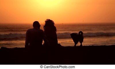 zachód słońca, para, plaża, pies