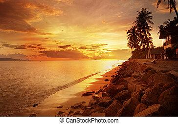 zachód słońca plaża