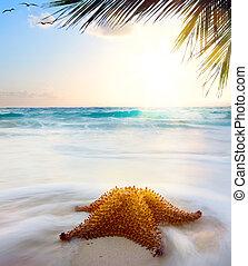 zachód słońca, sztuka, plaża, karaibski, czas