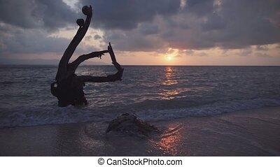 zachód słońca, tropikalna plaża