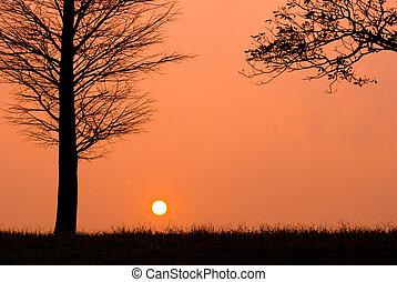 zachód słońca, w, niejaki, spokojny, wieczorny