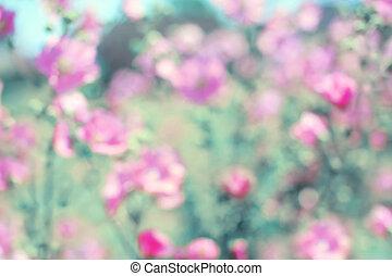 zacht, ouderwetse , vaag, floral, achtergrond, lente, rose bloemen, defocused