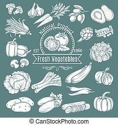 zaciągnąć, dekoracyjny, odizolowany, ręka wystawiają, vegetables.