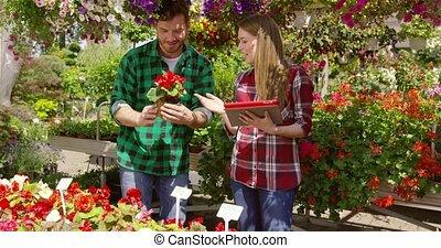 zadowolenie, para, uważając, kwiaty