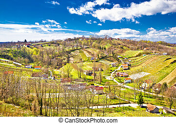 Zagorje region green vineyard hills