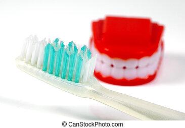 zahnbürste, falsche zähne