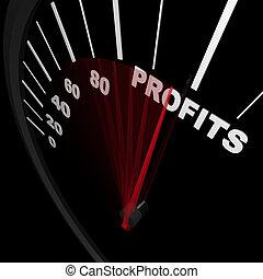 zakelijk, succesvolle , -, opstand, snelheidsmeter, winsten