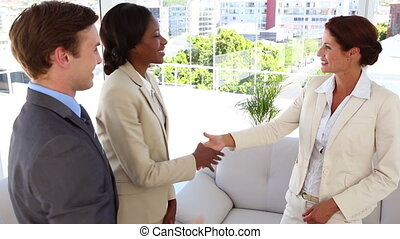 zakenlui, vergadering, en, schuddende handen