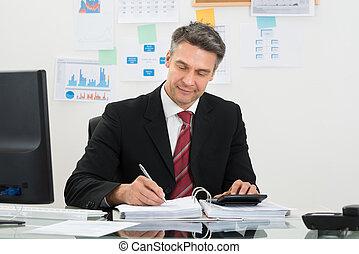 zakenman, financiën, het berekenen
