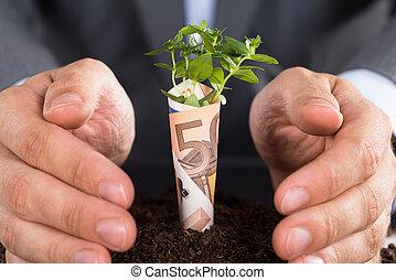 zakenman, groei, zakelijk, beschermen