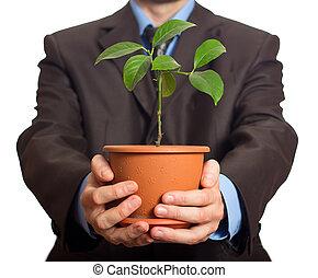 zakenman, is, vasthouden, een, plant, in, pot