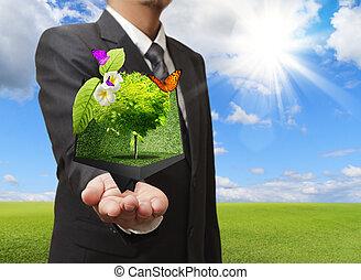 zakenman, vasthouden, een, creatief, doosje, van, boompje, in, zijn, hand, met, groene weide, op, de, achtergrond