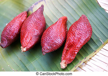 Zalacca wallichiana one of the most famous fruits