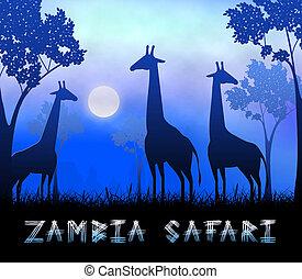 Zambia Safari Showing Wildlife Reserve 3d Illustration - ...
