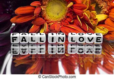 zamilovat se