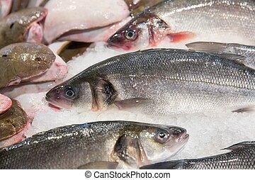 zamknięcie, fish, do góry, targ, wystawa