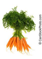 zanahorias, ramo