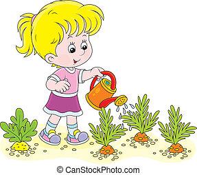 zanahorias, regar, niña