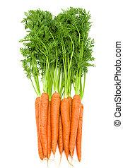 zanahorias, tapas, aislado, crudo, verde, fresco, ramo