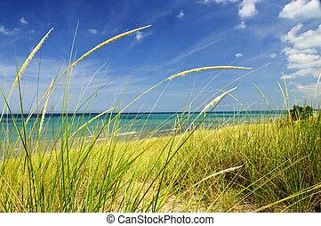 zand maant aan, op, strand