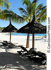 zand, tropische , wit strand