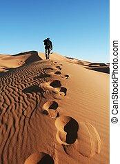 zand, woestijn