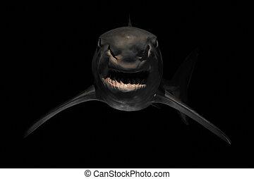 zangado, dentes, tubarão, afiado