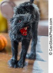 zangado, gato preto