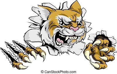 zangado, mascote, wildcat, esportes