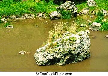 zanieczyszczony, potok, sewage.