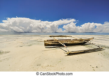 Zanzibar beach Tanzania - Zanzibar beach and coral rocks...