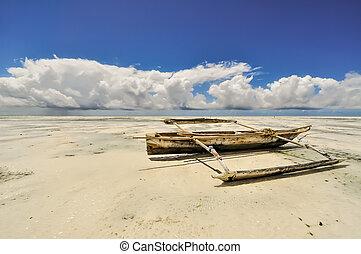 Zanzibar beach Tanzania - Zanzibar beach and coral rocks ...