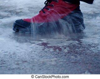 zapato, en, agua