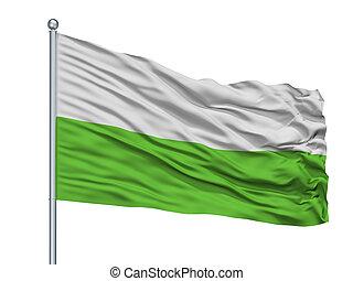 Zastava Pv City Flag On Flagpole, Montenegro, Isolated On...