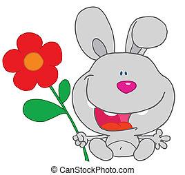 zawiera, królik, kwiat, szczęśliwy