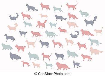 zbiór, kot, ikona, styl, dziedziczy się, white., koty, ...