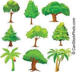 zbiór, od, drzewo
