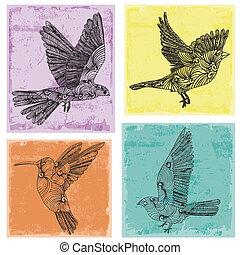 zbiór, ptaszki