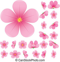 zbiór, różowy, komplet, wiśnia, ilustracja, sakura, kwiat,...